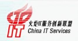中国火炬IT服务创新联盟